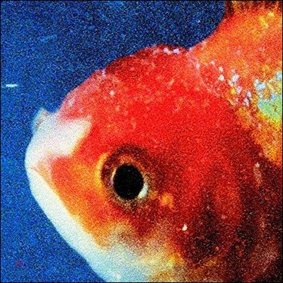 Vince Staples (빈스 스테이플스) - Big Fish Theory [픽쳐디스크 2 LP]