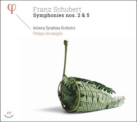 Philippe Herreweghe 슈베르트: 교향곡 2번 & 5번 (Schubert: Symphonies D.125 & D.485)