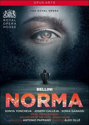 Antonio Pappano / Sonya Yoncheva 벨리니: 노르마 (Bellini: Norma) [DVD]