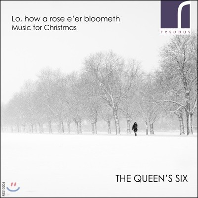 Queen's Six 지지 않는 장미를 보라 - 크리스마스 음악 (Lo, How a Rose E'Er Blooming - Music For Christmas)