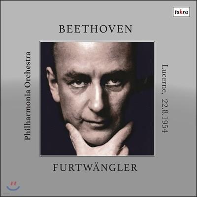 Wilhelm Furtwangler 베토벤: 교향곡 9번 '합창' (Beethoven: Symphony Op.125 `Choral`) [2LP]