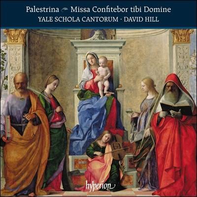 Yale Schola Cantorum 팔레스트리나: 미사 '마음을 다해 주님을 찬송하라' 외 (Palestrina: Missa Confitebor Tibi Domine)