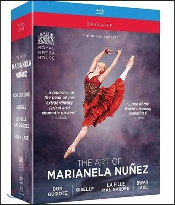 마리아넬라 누네즈의 예술 - 돈키호테, 지젤, 백조의 호수 외 (The Art Of Marianela Nunez)