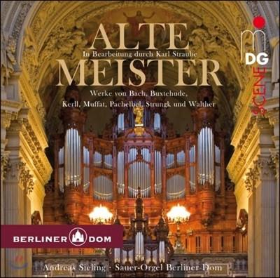 Alte Meister (슈트라우베가 편곡한 독일 바로크 대가들의 오르간 작품집)