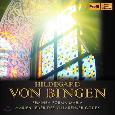 Ensemble Mediatrix 힐데가르트 폰 빙엔: 성모 찬가 - 빌라렌서 필사본 (Bingen: Femina Forma Maria & Marienlieder des Villarenser Codex)
