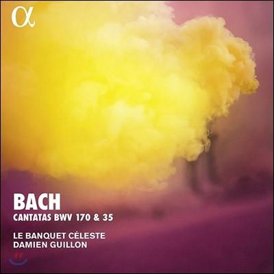 Damien Guillon 바흐: 칸타타 (Bach: Cantatas BWV 170, 35)