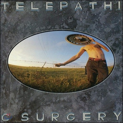 The Flaming Lips (플레이밍 립스) - Telepathic Surgery [LP]