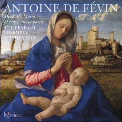The Brabant Ensemble 페뱅: 미사 아베 마리아, 미사 살베 상크타 파렌스 (Fevin: Missa Ave Maria & Missa Salve sancta parens)