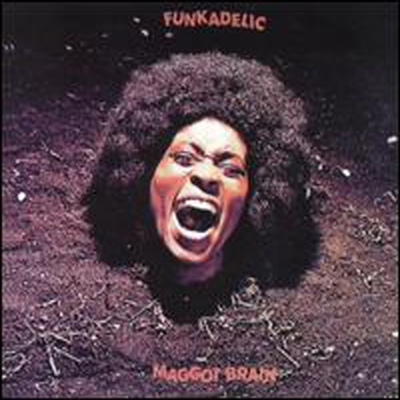 Funkadelic - Maggot Brain (Deluxe Edition) (180g 오디오파일 LP)