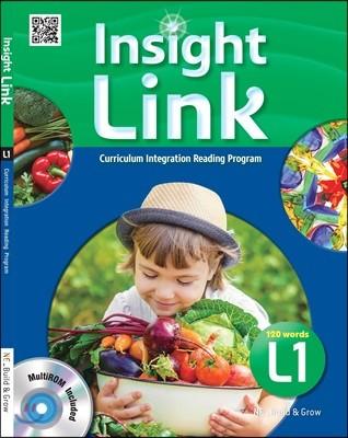 Insight Link 1