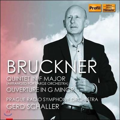 Gerd Schaller 브루크너: 오케스트라를 위해 편곡된 5중주곡 (Bruckner: Quintet in F Major [arranged for large orchestra])