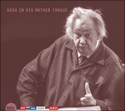 샨도르 베그가 연주하는 헝가리 명곡 (Vegh In His Mother Tongue)
