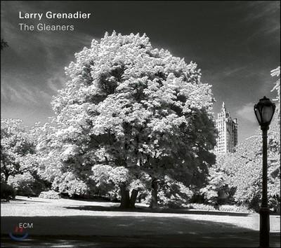 Larry Grenadier (래리 그레나디어) - The Gleaners [LP]