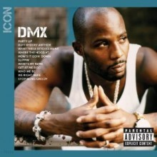 DMX - ICON