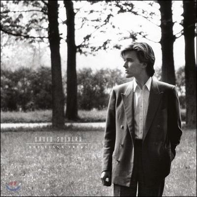 David Sylvian (데이빗 실비언) - Brilliant Trees [LP]