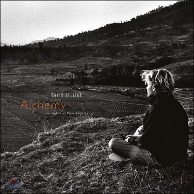 David Sylvian (데이빗 실비언) - Alchemy: An Index Of Possibilities [LP]