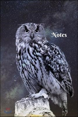 Notes: Owl at Night in the Moonlight 6 X 9 Blank Lined Writing Notebook Journal Composition Book, 110 Pages - Great Gift Idea