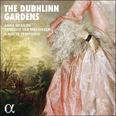 Reinoud Van Mechelen 더블린 가든 - 아일랜드 전통음악집 (The Dubhlinn Gardens)