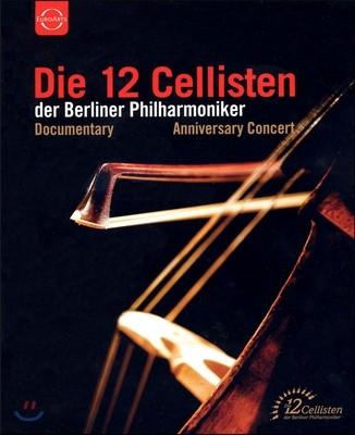 베를린 필 12첼리스트 창립 40주년 기념 콘서트 (Die 12 Cellisten der Berliner Philharmoniker)