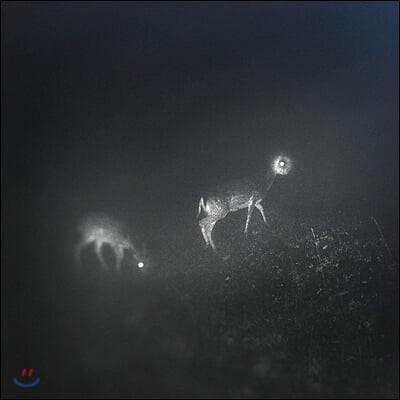Bliss Signal (블리스 시그널) - Bliss Signal (EP) [LP]