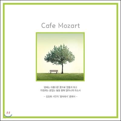 Cafe Mozart (카페 모짜르트)