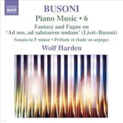 부조니 : 피아노 소나타 Op.20, 전주곡과 에튀드 (Busoni : Piano Music Volume 6) - Wolf Harden