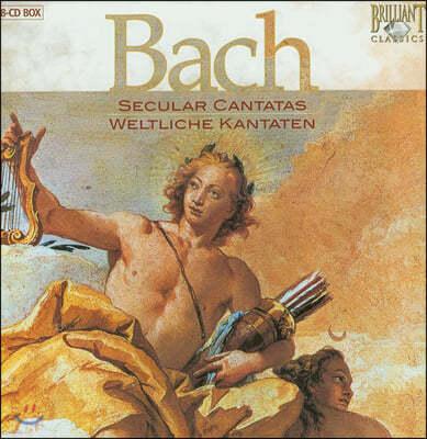 Edith Mathis 바흐: 세속 칸타타 (Bach: Secular Cantatas)