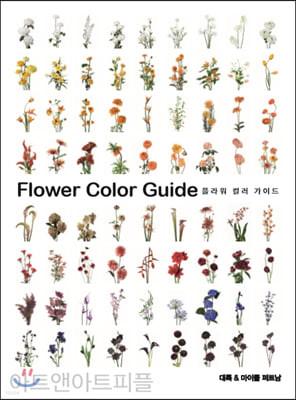 플라워 컬러 가이드 Flower Color Guide