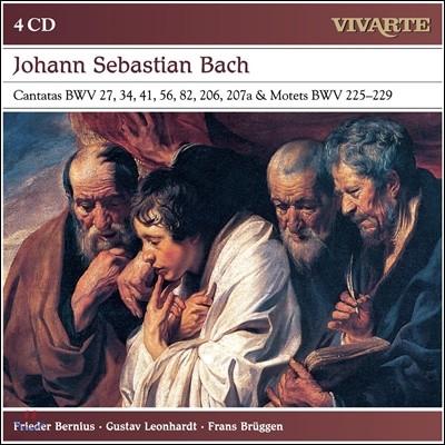 Frieder Bernius / Gustav Leonhardt / Frans Bruggen 바흐: 칸타타, 모테트 (JS Bach: Cantatas & Motets) 4CD