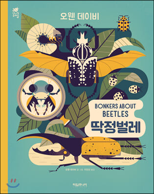 BONKERS ABOUT BEETLES 딱정벌레