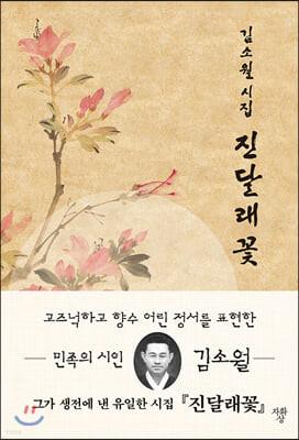 진달래꽃 김소월 시모음