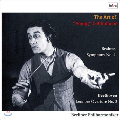 세르주 첼리비다케의 젊은 시절 명연 (The Art of Young Celibidache)