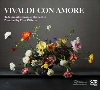Elisa Citterio 비발디 콘 아모레 (Vivaldi con amore)