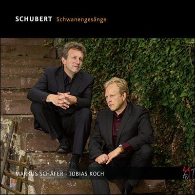 Markus Schafer 슈베르트: 백조의 노래 (Schubert: Schwanengesange)
