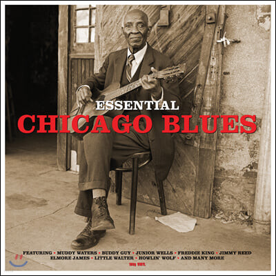 시카고 블루스 명곡 모음집 (Essential Chicago Blues) [LP]