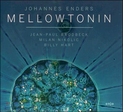 Johannes Enders (요하네스 엔더스) - Mellowtonin