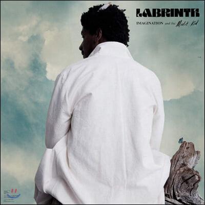 Labrinth (라브린스) - Imagination & The Misfit Kid [LP]