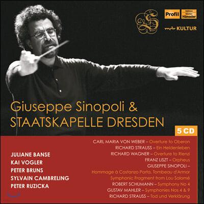 주세페 시노폴리 & 슈타츠카펠레 드레스덴 1993-2004 공연 실황 모음집 (Giuseppe Sinopoli & Staatskapelle Dresden Live)