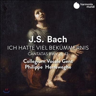 Philippe Herreweghe 바흐: 칸타타 (Bach: Cantatas BWV21, 42)