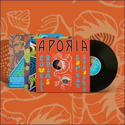 Sufjan Stevens & Lowell Brams (수프얀 스티븐스 & 로웰 브람스) - Aporia [LP]