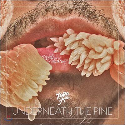 Toro Y Moi (토로 이 므와) - 2집 Underneath the Pine