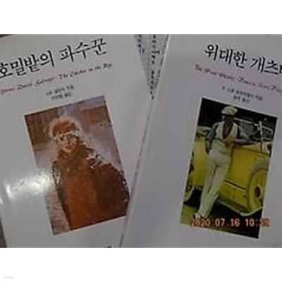호밀밭의 파수꾼 + 위대한 개츠비 /(두권/문예출판사/하단참조)