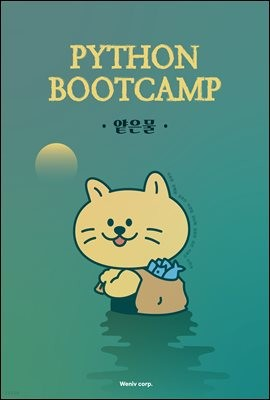 Python Bootcamp 얕은물
