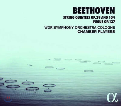 WDR Symphony Orchestra Cologne Chamber Players 베토벤: 현악5중주 Op.29,104 / 푸가 Op.137 (Beethoven: String Quintets)