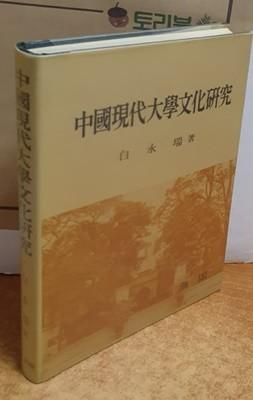 중국현대대학문화연구