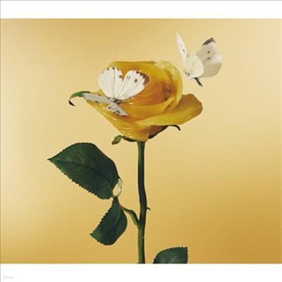 Aimyon (아이?D) - おいしいパスタがあると聞いて (2CD) (초회한정반)