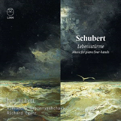 인생의 폭풍우 - 슈베르트: 네 손을 위한 피아노 작품집 (Lebenssturme - Schubert: Works for Pian Four-Hands)(CD)(Digipack) - Richard Egarr