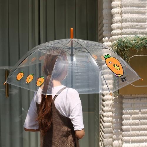6000 당친 투명 우산