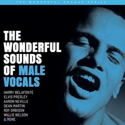 팝/재즈 남성 보컬 모음집 (The Wonderful Sounds of Male Vocals) [2LP]