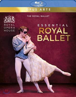 에센셜 로열 발레 (Essential Royal Ballet)